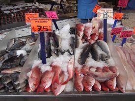 Zapopan_fish_market
