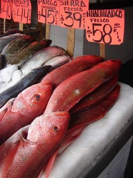 Zapopan_fish_market_really_big_red_snapp_1