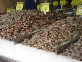 Zapopan_fish_market_regular_shrimps