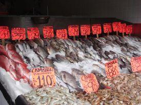 Zapopan_fish_market_variety