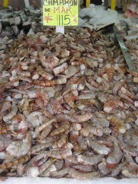 Zapopan_fish_market_wild_shrimp